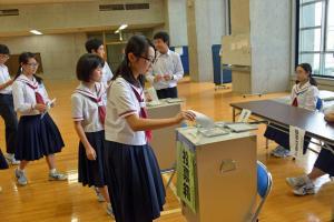 オークション投票