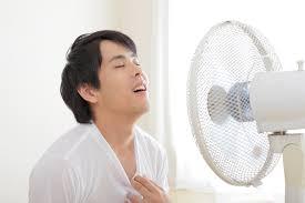 リビング扇風機